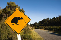 yellow road sign with a kiwi image